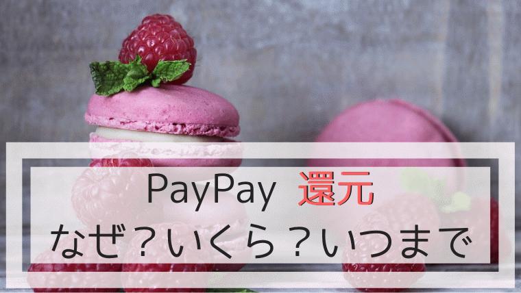 PayPay還元なぜ、いくら、いつまで